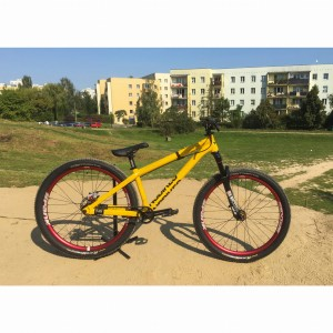 Rower dirt/slopestyle NS Decade Custom Rasta